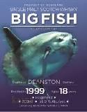 ディーンストン1999_18年 56%/ビッグフィッシュ