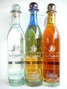 テキーラ(tequila)